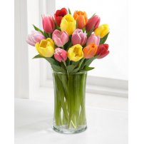 Rush of Color Assorted Tulip Bouquet, USA