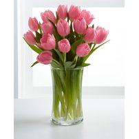Pink Prelude Tulip Bouquet , USA