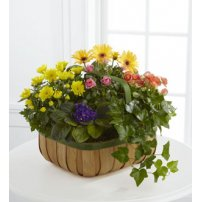 The FTD® Gentle Blossoms™ Basket, USA