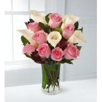 Callas & Roses, USA