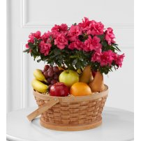 The FTD® Encircling Grace™ Fruit & Plant Basket, USA