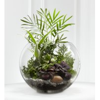 The FTD® Woodland Greens™ Terrarium, USA